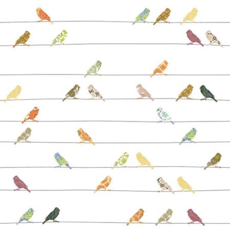 Inke2030 vogels bont staal
