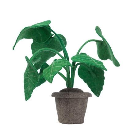 Kidsdepot vilten plant alocasia