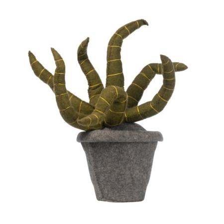 Kidsdepot vilten plant sanseveria green